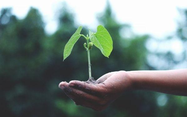 ▷ Reformas sostenibles y energéticamente eficientes (I) - Arkittai